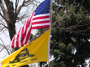 """Photo: American flag with the Gadsden """"Don't Tread On Me"""" flag; photo by Bob Glass; posted with permission by Ari Armstrong."""