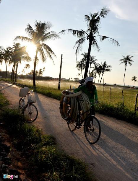 Ngày hè nắng nóng, từ sáng sớm, nông dân huyện đảo Lý Sơn chở ống nhựa ra đồng bơm nước tưới cho cây hành.