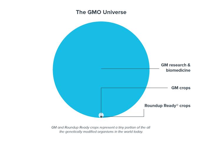 The-GMO-Universe-3-2