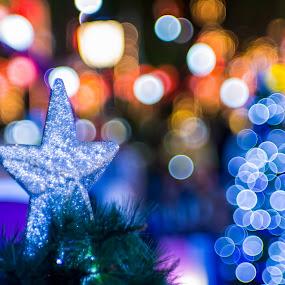 Star of Xmas by Maskun Ramli - Public Holidays Christmas ( season, ornament, star, christmas, bokeh )