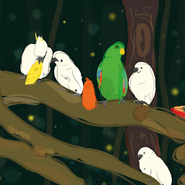 Parrots by Cheong Plyn - Illustration Animals ( bird, animals, style, simplicity, zoo, artsy, family, illustration, parrot, lovely, night )