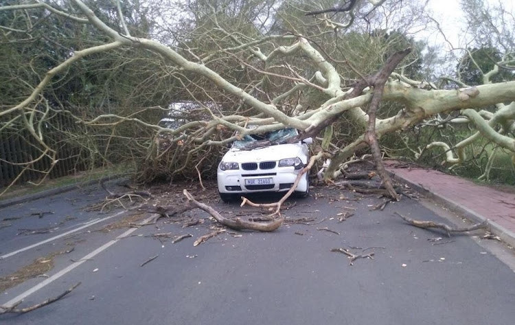 Gale force winds have caused havoc in Durban.
