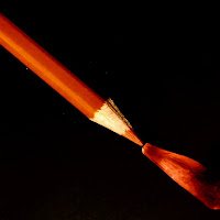 Il petalo e la matita