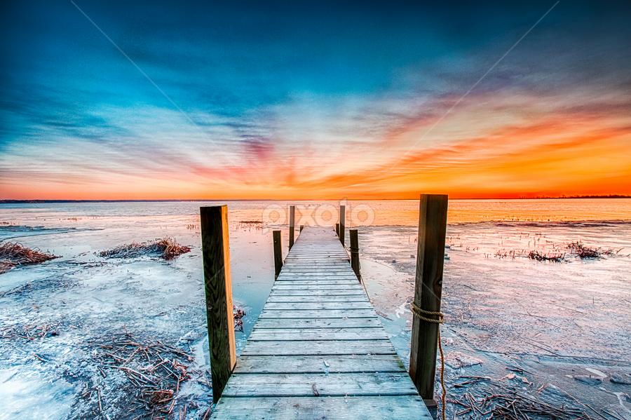 Serentiy by Trevor Pottelberg - Landscapes Sunsets & Sunrises ( shore, t.pottelberg, long point, canada, scenics, lake, ontario, scenic, landscape, photography, bay, shoreline, photographer, 'long point bay, lake erie )