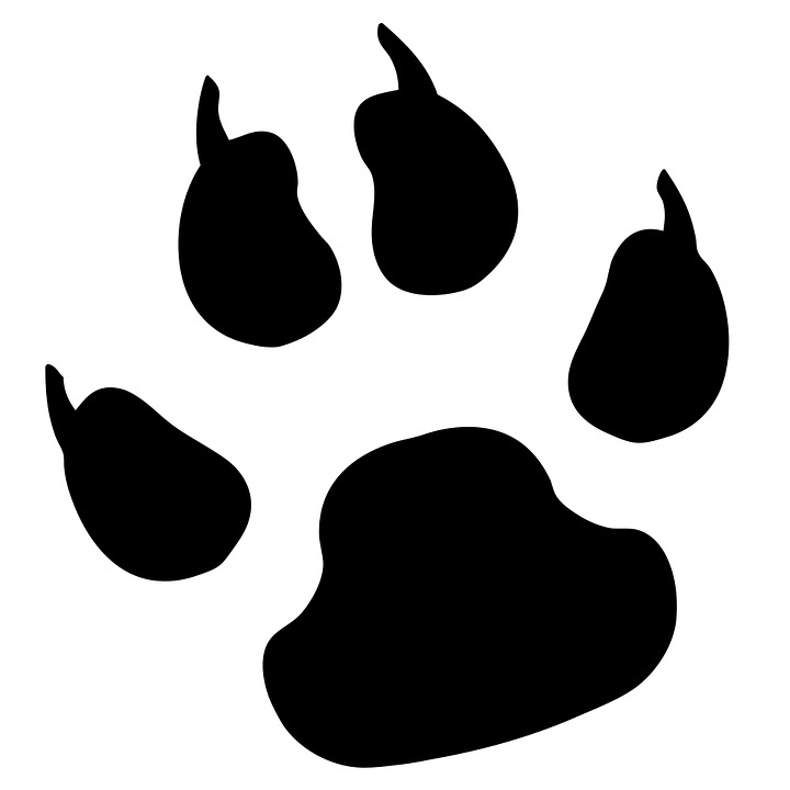 Paw Print, Pawprint, Dog, Pet, ...