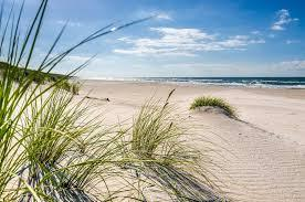 plaża.jpg