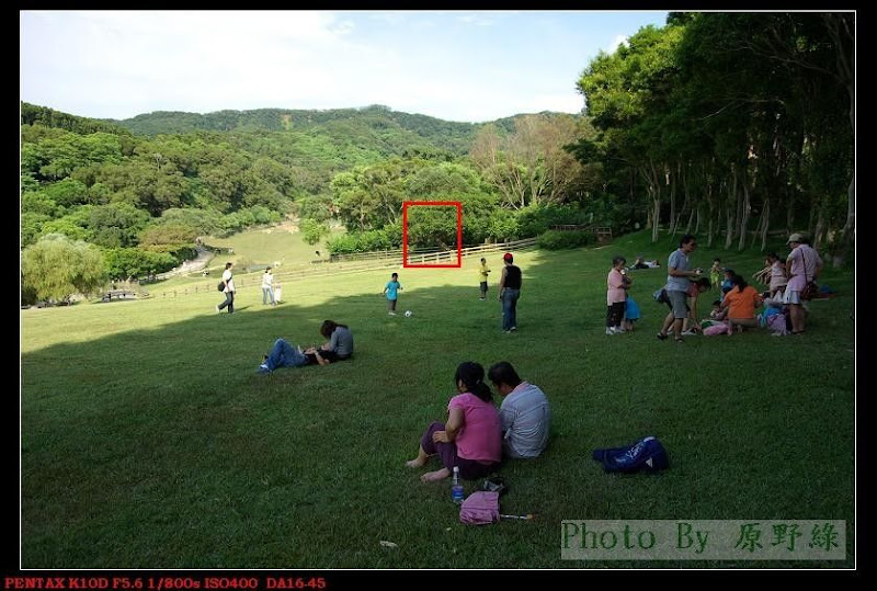 [DA☆16-50mm三部曲]PENTAX DA☆16-50 與 DA 16-45 差異之比較!...by 原野綠
