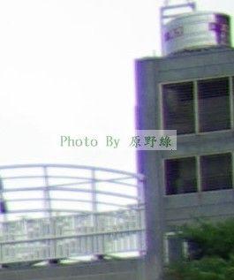 [DA☆16-50mm四部曲]PENTAX DA☆16-50 與 SIGMA 18-50 差異之比較!...by 原野綠