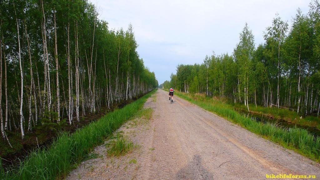 пробраться в Завидово на велосипеде