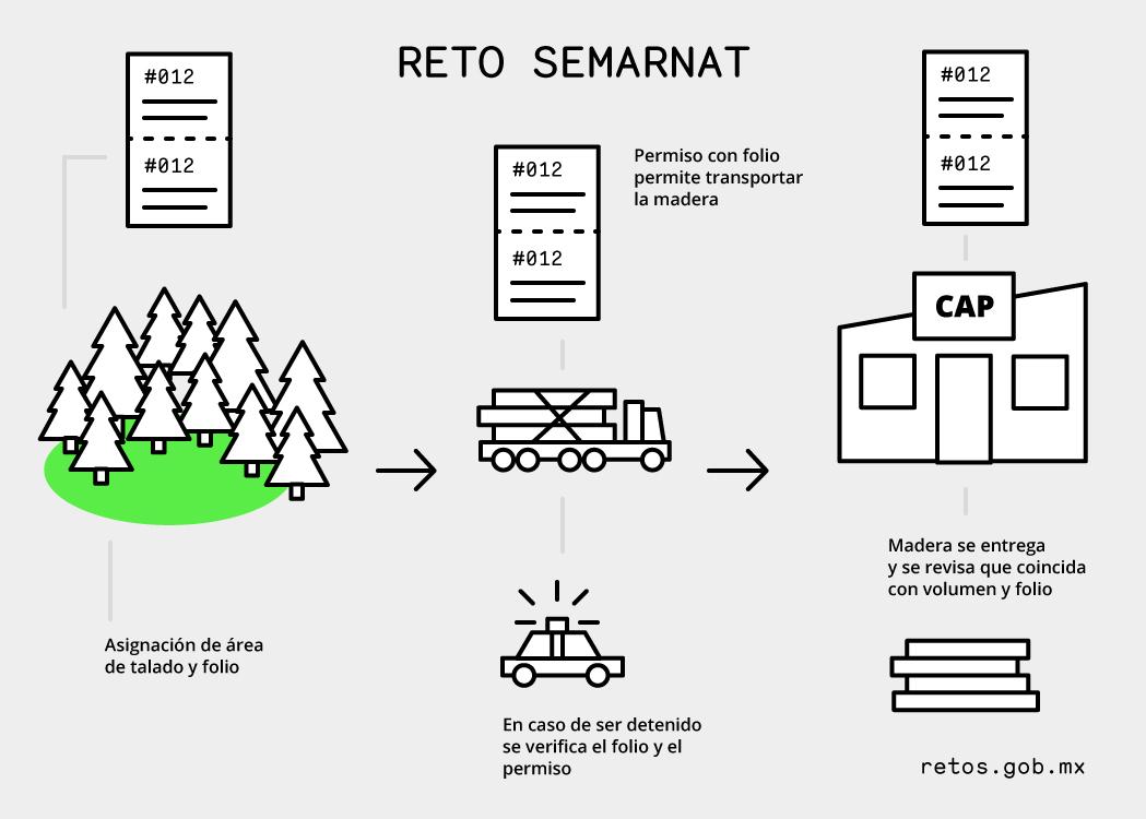 Infografía Semarnat.jpg