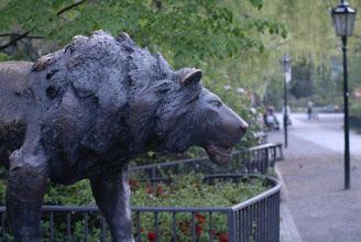 Photo: Zoo - Berlin https://plus.google.com/photos/102558430653537652962/albums/5978103567466232465  Waldemar Grzimmek + Jana Grzimek https://plus.google.com/photos/102558430653537652962/albums/5978492528503221137  G+ - Ways - Wege ´¯`•.¸ƸӜƷ http://x2t.com/Gplus-Ways  G+ - KaufsImKiloBerlin - http://x2t.com/Gplus-KaufsImKiloBerlin G+ - KaufsImKiloBooks - http://x2t.com/Gplus-KaufsImKiloBooks G+ - KaufsImKiloOffice - http://x2t.com/Gplus-KaufsImKiloOffice  ------------------------------------------------------  on FB - search for photos - ´¯`•.¸ƸӜƷ - Ways-Wege --- to over 500 pictures folder *** http://x2t.com/1/Ways-Wege