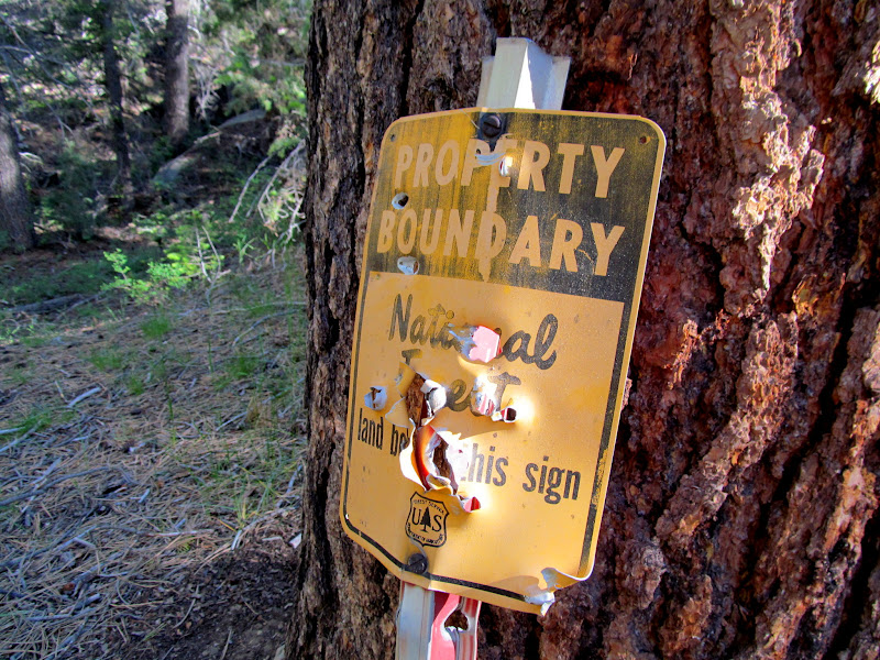 Photo: National forest boundary sign