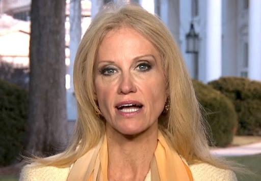 White House counselor Conway says GOP healthcare plan is good, not perfect