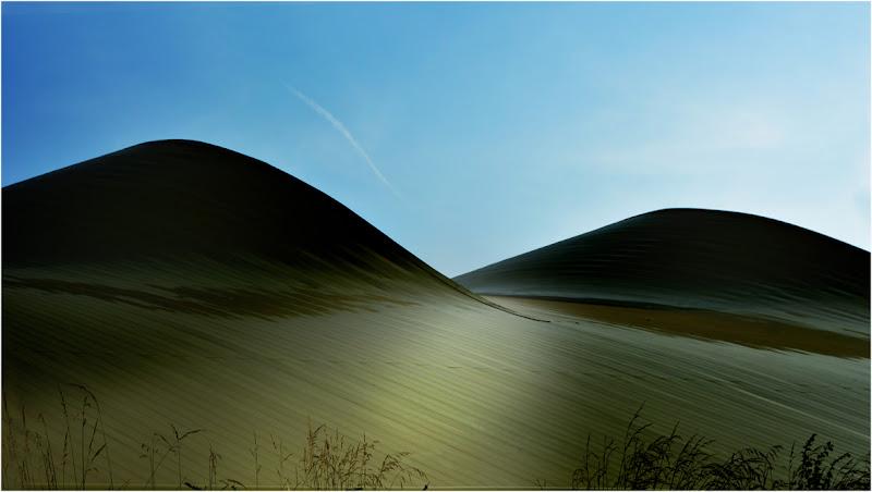 dune in citta  di Tolli