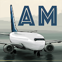 Airport Madness: World Edition icon