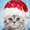 Christmas Photo Frames, Effects & Cards Art icon