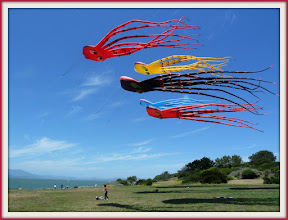 Photo: The park is a prime spot for kite flying almost every day