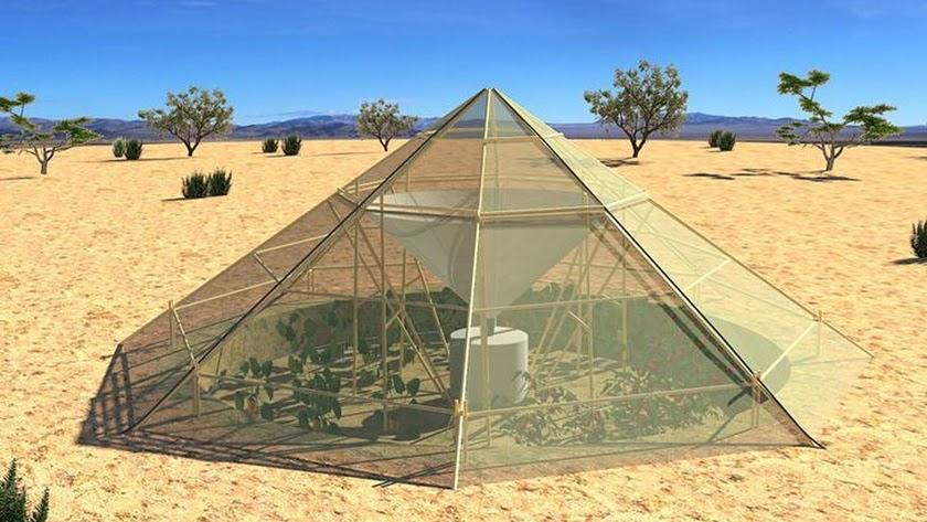 Un invernadero que aprovecha el agua de rocío para producir en pleno desierto