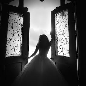 Bride in Doorway by Lisa Raith - Wedding Bride ( pwcprofiles )