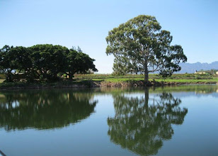 Photo: Robertson River cruise - the water was as calm as glass