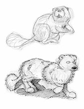 Photo: Critter sketches