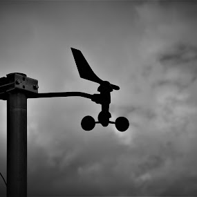 weather unit by Cosimo Resti - Artistic Objects Industrial Objects ( weather, black and white )