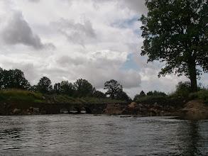 Photo: A tak wygląda ujście Ścinawy Niemodlińskiej