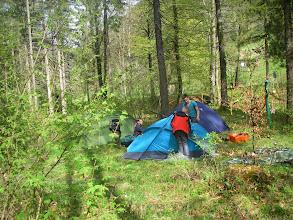 Photo: Bunte Zelte im Wald