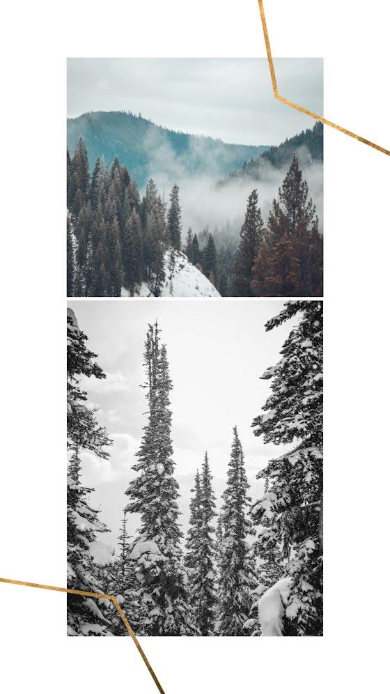 Cabin & Campfire - Facebook Story Template