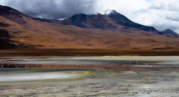 laguna colorata di francesco|gallorini