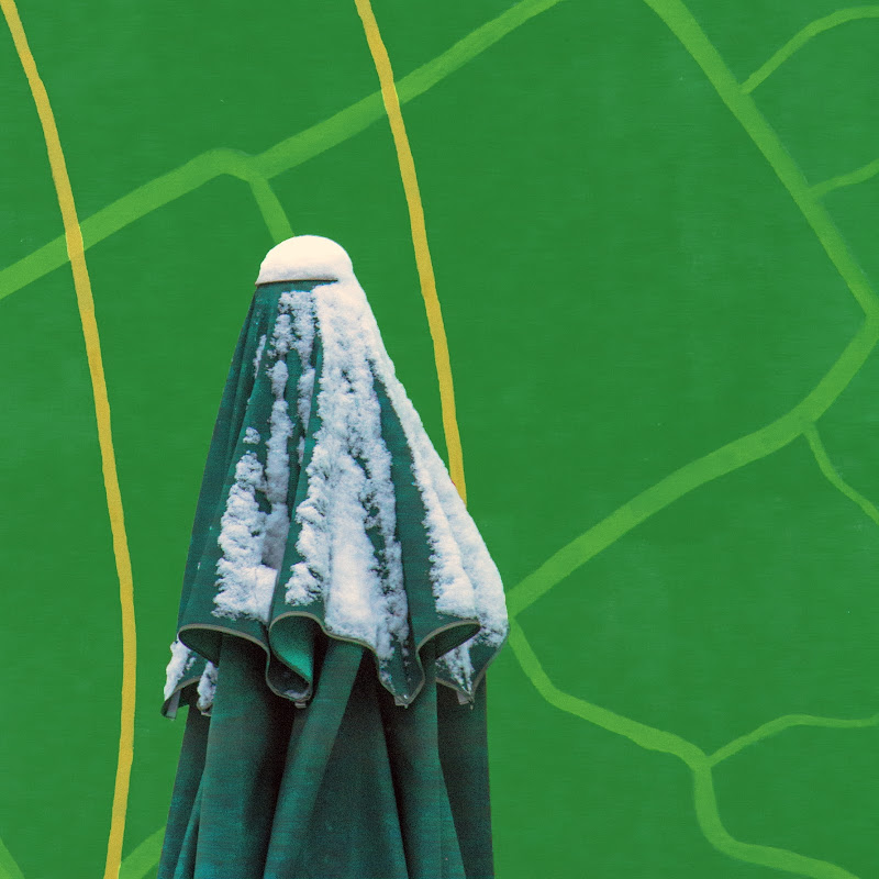 Mysterious green woman di D. Costantini