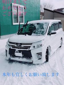 ヴォクシー ZRR85W ZS前期煌のカスタム事例画像 syukninn「TL北海道」さんの2019年01月07日08:02の投稿