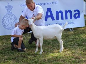 Photo: Rubriek 1: witte lammeren geboren tussen 3-2 en 22-3-2014. Pieter en Pim met Anne.