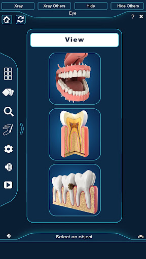 Dental Anatomy Pro. 1.4 screenshots 1