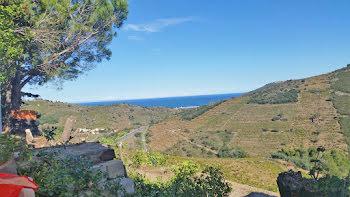 terrain à Collioure (66)