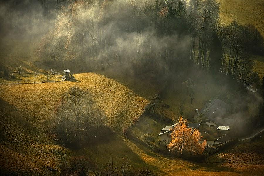 Autumn Morning by Jaro Miščevič - Landscapes Sunsets & Sunrises ( houses, foggy, lighting, autumn, trees, morning, light, colours )