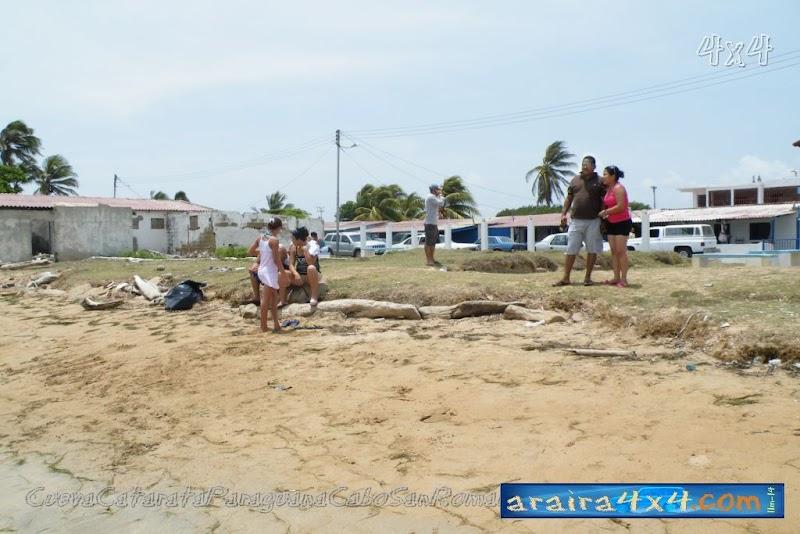 Playa El Supi F231, Estado Falcon, Venezuela