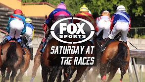FOX Sports Saturday at the Races thumbnail