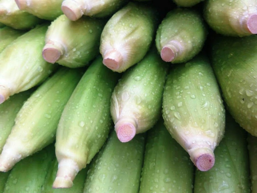 by Tina Banik - Food & Drink Fruits & Vegetables (  )