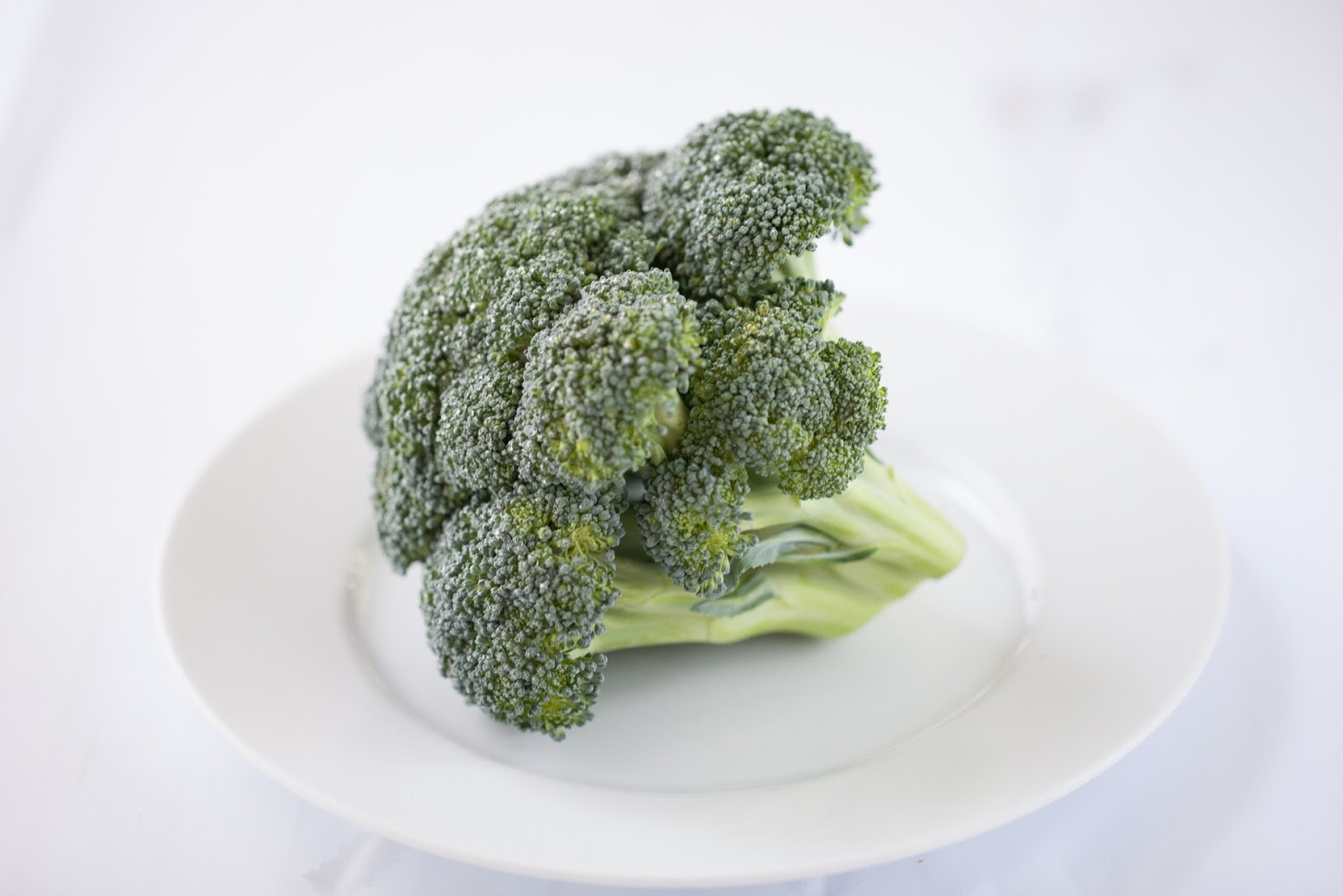Raw broccoli on a white plate on a table.