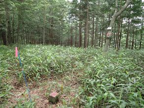 笠松山山頂(三角点)