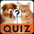 Free english vocabulary quiz apk