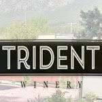 Trident Strawberry And Buckwheat Mead