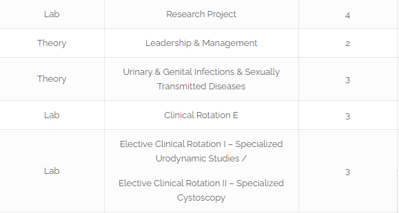 Roadmap To become Pediatric Urologist In Pakistan [Detailed Guide] 9 - Daily Medicos