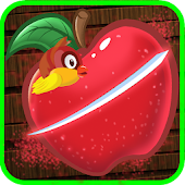 Fruit Cut: Classic Bird Rescue Game For Kids