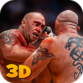 MMA Sports Fighting 3D