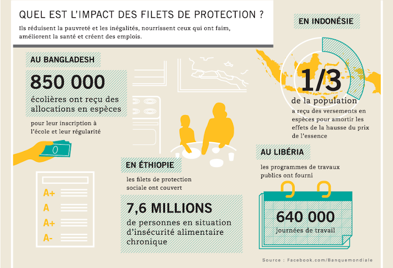 Photo: Quel est l'impact des filets de protection ?