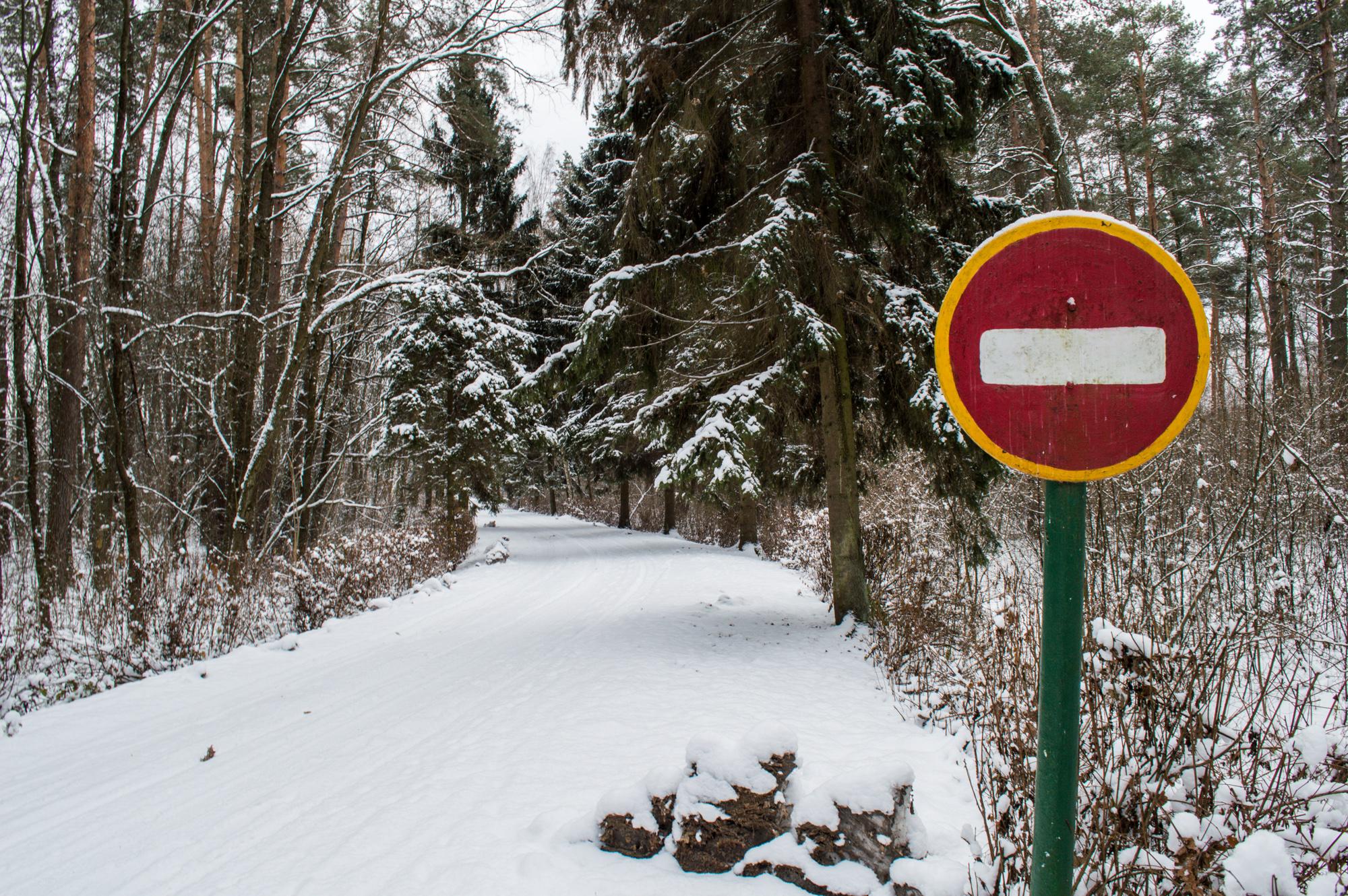Дорога до Лісорозсадника