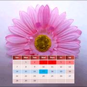مذكرتي اليومية للدورة الشهرية