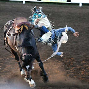 Up and Off by Justin Quinn - Sports & Fitness Rodeo/Bull Riding
